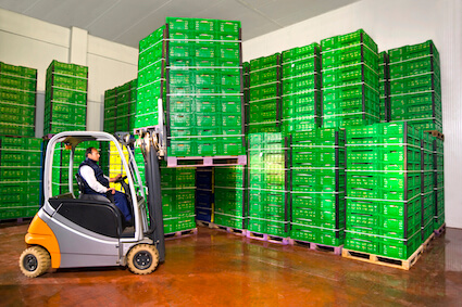 Forklift driver with fruit crates in cold storage warehouse